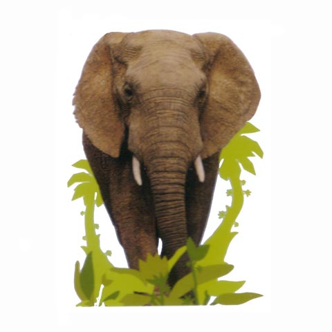 Complementi e decori - Maxi Sticker DE 41371 Elefante by Decofun