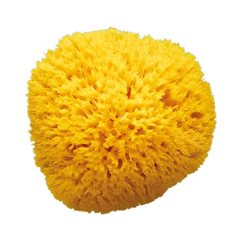 Altri accessori per il neonato - Spugna naturale Arcipelago Misura 14  [cod.847] by Okbaby