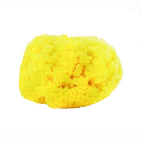 Prodotti igiene personale - Spugna marina media - Igiene Sicura 62179.4 by Chicco