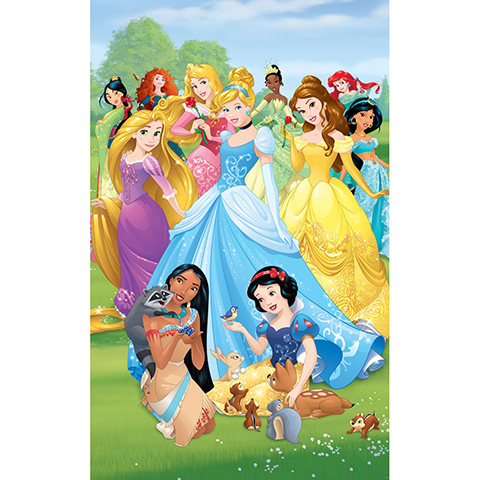 Complementi e decori - Principesse Disney - poster murale 6 pannelli DISNEY PRINCESS [43053] by Walltastic